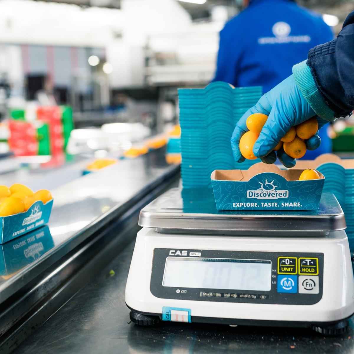 Van een vlekkeloze wifi-verbinding tot een slimme oplossing om snel etiketten te printen: het succesverhaal van REG & TECH